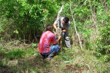 Mauricio (a Lamanai guide) and Erlin (one of our landowners) setting up a Cuddeback camera trap